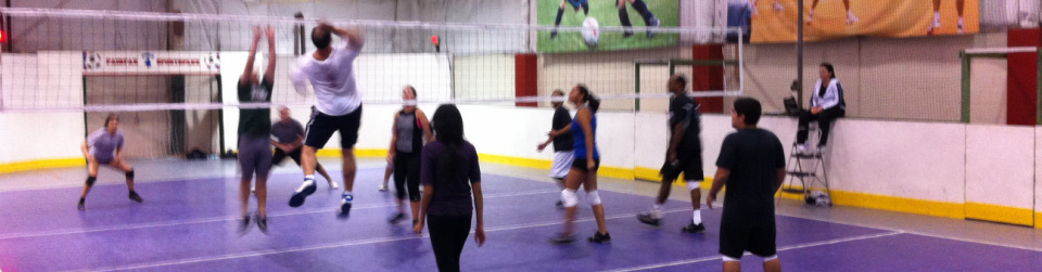 Adult Volleyball Fairfax Sportsplex