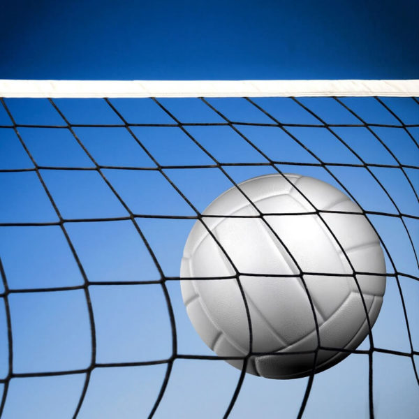 Volleyball - Team Signup